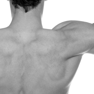 Black and White Male Pectoral Muscles